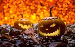 Тыква из бумаги на Хэллоуин: интересные идеи и изготовление, фото