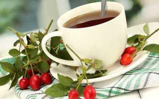 Шиповник и боярышник: как заваривать и пить, полезные свойства и противопоказания