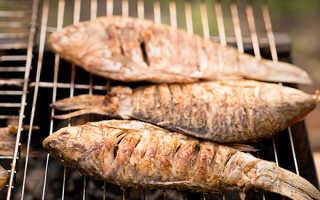 Карась на мангале на решётке: рецепты с фото, как вкусно приготовить шашлык на углях, как пожарить на