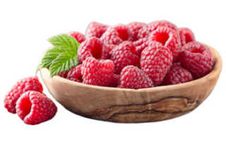 Малина: полезные свойства для организма человека, употребление и противопоказания