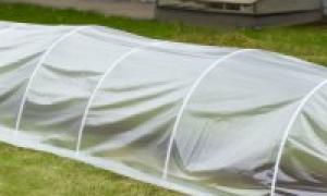 Парники из дуг (пластиковые, железные): как выбрать готовые от производителей, как и из чего сделать своими руками