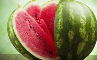 Как прорастить семена арбуза: как сажать, время всхожести, посадка проросших семян