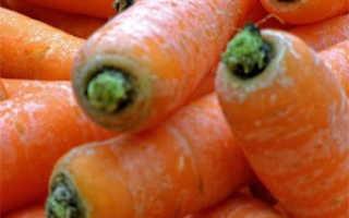 Как правильно обрезать морковь для хранения на зиму: способы и особенности, фото