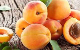 Жердела и абрикос: в чём разница, описание, основные отличия, фото