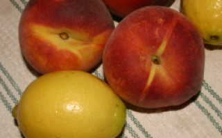 Яблоки при язве желудка: можно или нет, полезные свойства, противопоказания, особенности употребления