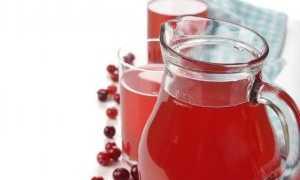 Применение брусничного морса при беременности: польза и вред, на разных сроках, рецепты