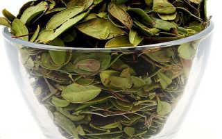 Использование брусники при лечении цистита: ягоды, брусничный лист, сбор, отзывы