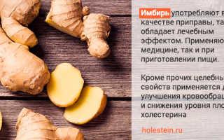 Имбирь с лимоном и мёдом при повышенном холестерине в крови: можно ли снизить уровень вещества, его польза