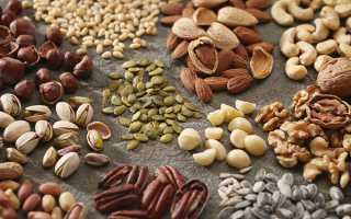 Как хранить кедровые орехи в скорлупе и без: как сушить и очищать, срок хранения продукта в домашних