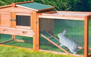 Вольер для кроликов своими руками на улице: фото, чертежи, постройка, содержание, разведение