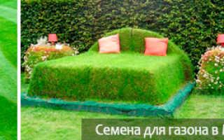 Стрижка газонной травы: как правильно косить и как часто нужно это делать, можно ли стричь газон после