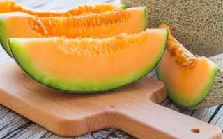Дыня при похудении – можно ли есть? Состав и калорийность, отзывы