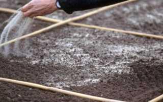 Сеялка для газона своими руками: ручная машина для посева с перекрёстным рассеиванием семян, оборудование для удобрения газонных