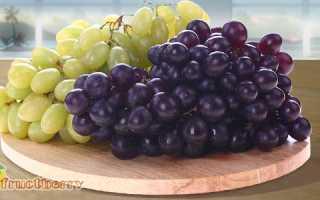 Виноград чёрный: польза и вред для организма человека, калорийность и состав
