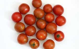 Почему помидоры в теплице мелкие: основные причины, что при этом делать