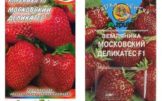 Клубника Московский деликатес: характеристика и описание сорта, выращивание и уход, фото