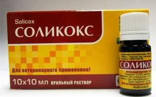 """""""Соликокс"""" для кроликов: инструкция по применению для лечения и профилактики, дозировка, как развести препарат"""