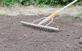 Как подготовить почву для рулонного газона: подготовка основания земли для укладки своими руками, удобрение перед укладкой, какая