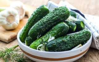 Сухая засолка огурцов: пошаговый рецепт приготовления в пакете, видео