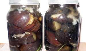 Как замариновать баклажаны быстро и вкусно: лучшие рецепты маринования, особенности хранения заготовок