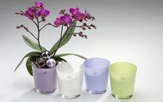 Какие должны быть горшки для орхидей: как правильно выбрать и как сделать своими руками, размеры, фото, видео