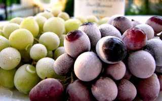 Как правильно заморозить виноград на зиму в морозилке?