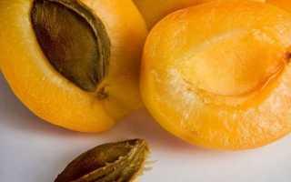 Как сушить абрикосы на курагу: свойства, способы сушки, пошаговая инструкция по сушке в духовке, правила хранения