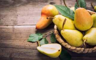 Сушёные груши: польза и вред, состав и калорийность, правила употребления