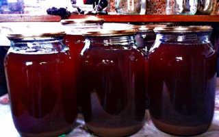 Как сделать сок из винограда: простые рецепты, на зиму, в домашних условиях