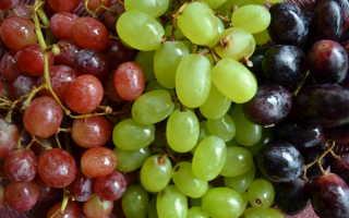 Аллергия на виноград: может ли быть, симптомы у ребёнка и взрослых с фото, методы лечения, можно ли