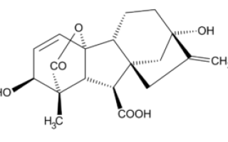 «Гиббереллин» для винограда: инструкция по применению и дозировка, для чего применять