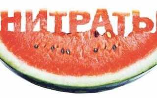 Проверка арбуза на нитраты в домашних условиях – нормы и способы