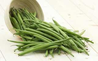 Спаржевая фасоль: выращивание и уход, сорта, фото