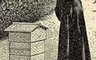 Улей аббата Эмиля Варрэ: чертежи, изготовление, отзывы
