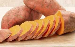 Сладкий картофель, или батат: описание и сорта, полезные свойства, особенности выращивания и приготовления, фото