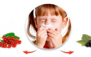 Может ли смородина быть аллергеном, симптомы и причины проявления аллергии