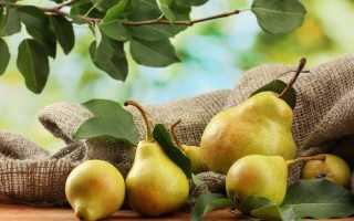 Как сушить груши в домашних условиях: выбор сорта, виды сушки, польза и вред сушёных груш