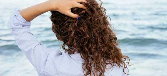 Применение масла чёрного тмина для волос: способы и основные правила применения для роста и восстановления волос