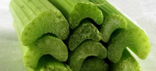 Корень сельдерея: полезные свойства для организма человека, как употреблять, противопоказания