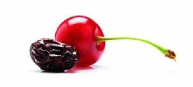 Сушёная вишня: польза и вред для организма, применение, как сушить и хранить