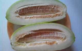 Огурдыня: что это такое, особенности в выращивании и уходе, рекомендации по употреблению, фото