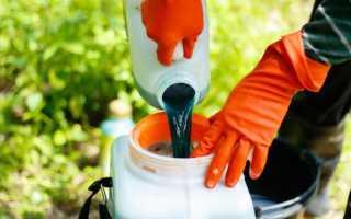 Как обработать смородину бордоской жидкостью: как приготовить смесь, принцип действия, плюсы и минусы фунгицида, когда обрабатывать весной