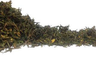 Рододендрон Адамса: полезные свойства и противопоказания, применение травы, фото