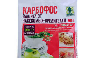 Обработка смородины «Карбофосом» весной: можно ли опрыскивать перед цветением, как разводить, дозировка препарата