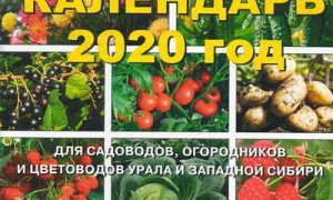 Посадочный календарь садовода и огородника на 2020 год для Урала