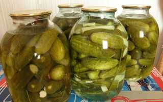 Как солить крупные огурцы: рецепты соления в банках на зиму