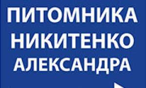 Жёлтоплодный сорт крыжовника Юбилейный: описание и особенности сорта, фото, отзывы
