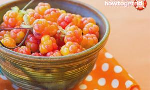 Морошка: полезные свойства и противопоказания, чем полезна ягода, польза и вред для организма человека, фото, лечебные свойства