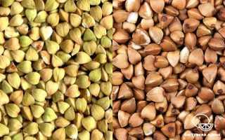 Зелёная гречка: чем отличается от обычной (коричневой), какая крупа полезней, почему зелёная гречка дороже обычной