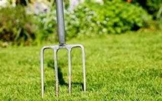 Уход за газоном весной после зимы: как правильно ухаживать на второй год, как убрать с газона прошлогоднюю